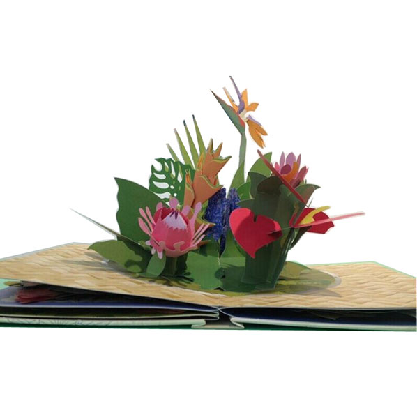 pop up book 3